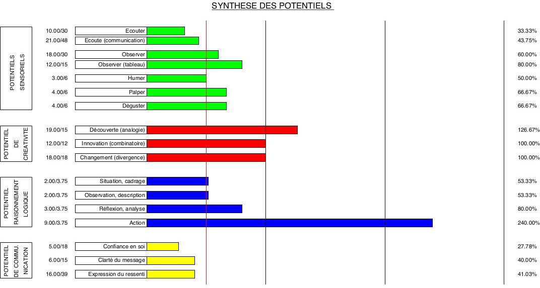 Exemple d'un Bilan de Potentiels
