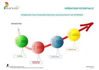 Schéma des facultés en relation avec les capacités et les potentiels